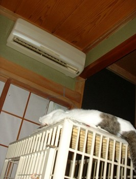 エアコン下で